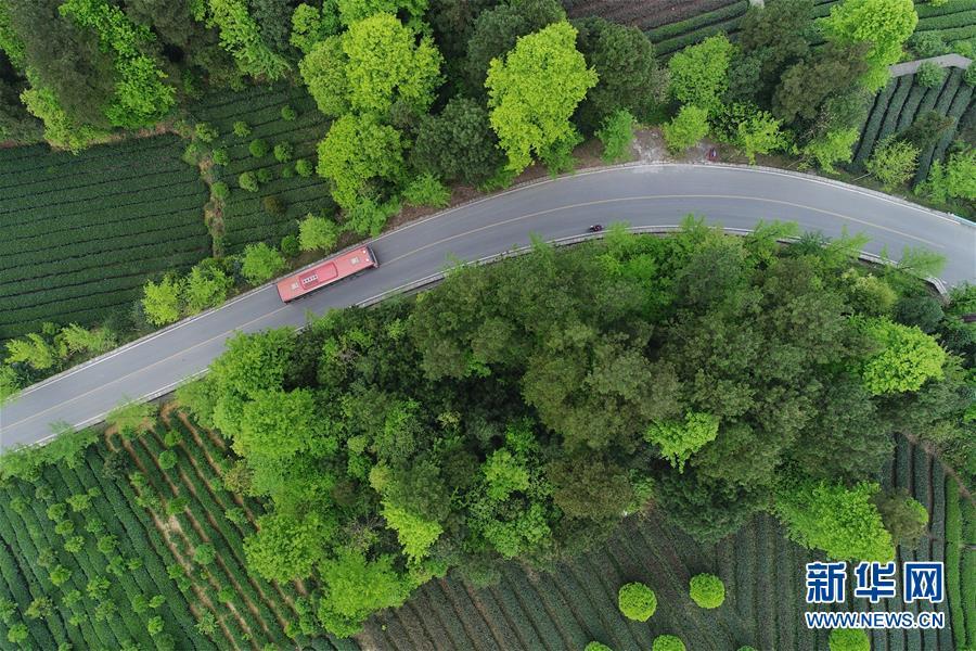 (新華全媒頭條·圖文互動)(6)希望灑在金色田野——寫在鄉村振興戰略實施一周年之際