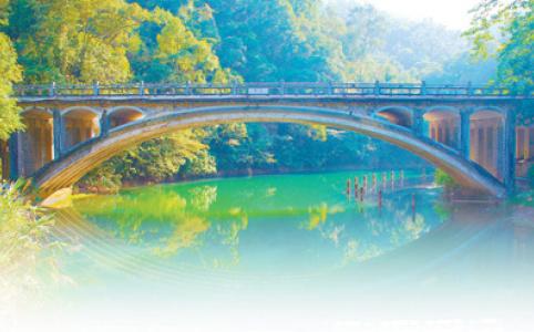 """【新中国的""""第一""""·70年】第一个自然保护区鼎湖山:山林常绿水常清"""